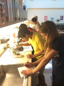 7th Grade Scientists